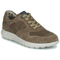 鞋子 男士 球鞋基本款 CallagHan WASSER 米色