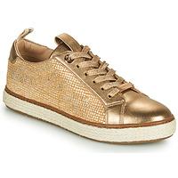 鞋子 女士 球鞋基本款 JB Martin 1INAYA 金色