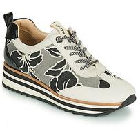 鞋子 女士 球鞋基本款 JB Martin 4CASSIE 灰色 / 黑色