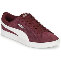 鞋子 女士 球鞋基本款 Puma 彪马 VIKKY 波尔多红