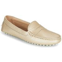 鞋子 女孩 平底鞋 JB Martin 1TABATA 金色