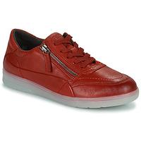 鞋子 女士 球鞋基本款 Jana PHOEBIA 红色