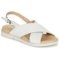 鞋子 女士 凉鞋 Mjus KETTA 白色