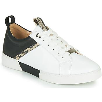 鞋子 女士 球鞋基本款 JB Martin GELATO 白色 / 黑色
