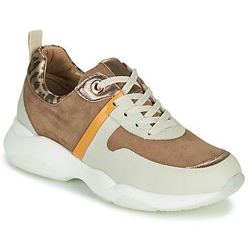 鞋子 女孩 球鞋基本款 JB Martin WILO 棕色