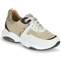 鞋子 女孩 球鞋基本款 JB Martin WILO 白色