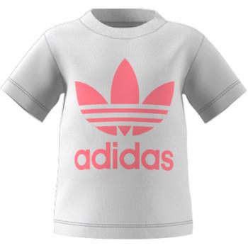 衣服 儿童 短袖体恤 Adidas Originals 阿迪达斯三叶草 GN8175 白色