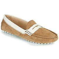鞋子 女孩 平底鞋 JB Martin 1TABATA 棕色