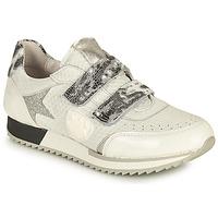 鞋子 女士 球鞋基本款 Philippe Morvan ROLL V1 白色
