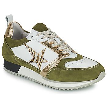 鞋子 女士 球鞋基本款 Philippe Morvan ROOXY V2 白色 / 卡其色