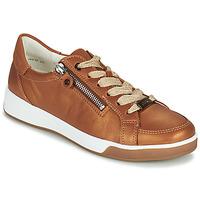 鞋子 女士 球鞋基本款 Ara ROM-HIGHSOFT 棕色