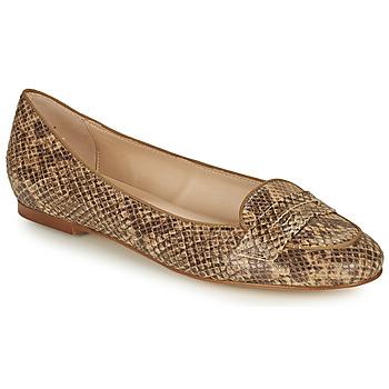 鞋子 女士 平底鞋 Betty London OVINOU 灰褐色