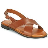 鞋子 女士 凉鞋 Minelli DONA 棕色