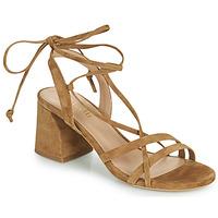 鞋子 女士 凉鞋 Minelli TATIA 棕色