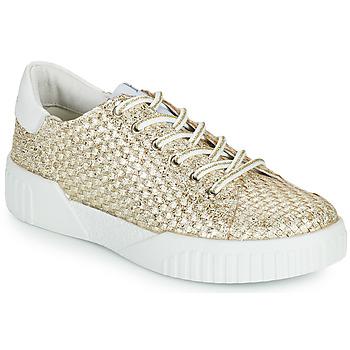 鞋子 女士 球鞋基本款 Café Noir JANISA 白色 / 金色