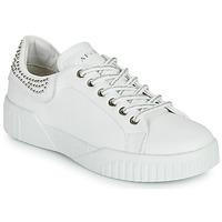 鞋子 女士 球鞋基本款 Café Noir THINA 白色
