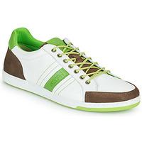 鞋子 男士 球鞋基本款 Kdopa MARIANO 白色 / 绿色