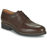 鞋子 男士 德比 Pellet Magellan 棕色