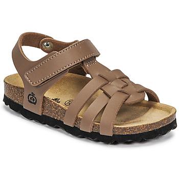 鞋子 男孩 凉鞋 Citrouille et Compagnie JANISOL 棕色 / 灰褐色
