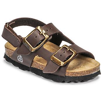 鞋子 男孩 凉鞋 Citrouille et Compagnie KELATU 棕色