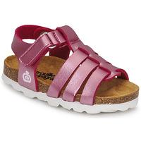 鞋子 女孩 凉鞋 Citrouille et Compagnie MALIA 玫瑰色