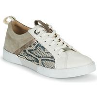 鞋子 女士 球鞋基本款 JB Martin GELATO 灰色 / 白色