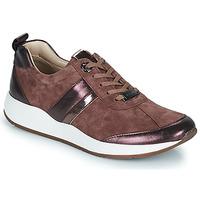 鞋子 女士 球鞋基本款 JB Martin KAP Poudré