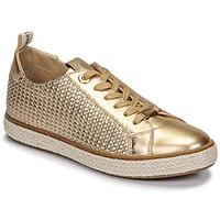 鞋子 女士 球鞋基本款 JB Martin INAYA Argan