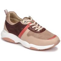 鞋子 女士 球鞋基本款 JB Martin WILO 玫瑰色