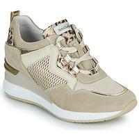 鞋子 女士 球鞋基本款 Nero Giardini DARKO 米色