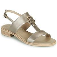 鞋子 女士 凉鞋 Nero Giardini PLUIE 金色