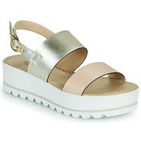 鞋子 女士 凉鞋 Nero Giardini SABRI 白色 / 金色