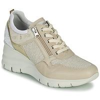 鞋子 女士 球鞋基本款 Nero Giardini FLORA 米色 / 金色