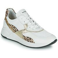 鞋子 女士 球鞋基本款 Nero Giardini FIDEL 白色 / Leopard