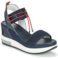 鞋子 女士 凉鞋 Nero Giardini CAMINO 海蓝色 / 红色