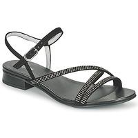鞋子 女士 凉鞋 Nero Giardini TEDDY 黑色
