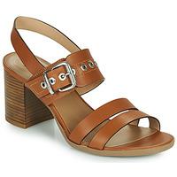鞋子 女士 凉鞋 Nero Giardini GHILLO 棕色