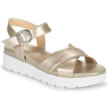 鞋子 女士 凉鞋 Nero Giardini LONELESS 金色
