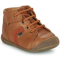 鞋子 男孩 高帮鞋 GBB GARY 棕色