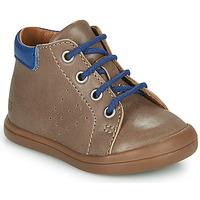 鞋子 男孩 高帮鞋 GBB TIDO 棕色