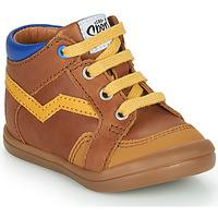 鞋子 男孩 高帮鞋 GBB ASTORY 棕色