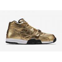 鞋子 球鞋基本款 Nike 耐克 Air Trainer 1 Super Bowl Metallic Gold/Metallic Gold-Black
