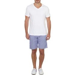 衣服 男士 短褲&百慕大短褲 Franklin & Marshall GAWLER 藍色 / 米色