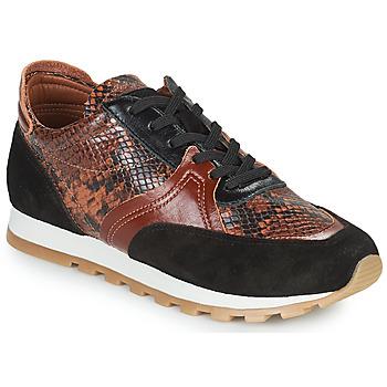 鞋子 女士 球鞋基本款 JB Martin GLOIRE 棕色
