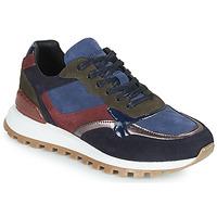 鞋子 女士 球鞋基本款 JB Martin HUMBLE 蓝色