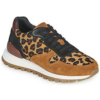 鞋子 女士 球鞋基本款 JB Martin HABILLE 棕色