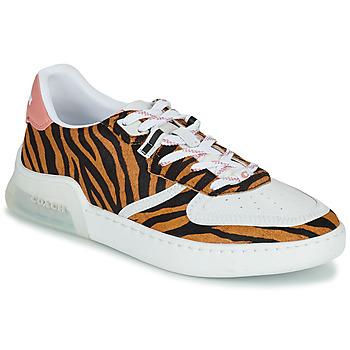 鞋子 女士 球鞋基本款 Coach CITYSOLE COURT 多彩