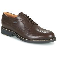 鞋子 男士 德比 Pellet NORMAN 棕色