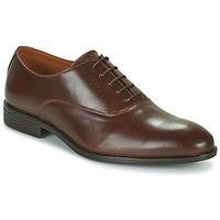 鞋子 男士 德比 Pellet ACHILLE 棕色
