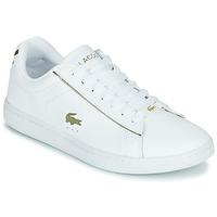鞋子 女士 球鞋基本款 Lacoste CARNABY EVO 0721 3 SFA 白色